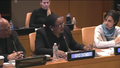 AfroCROWD Program and Outreach Director, Sherry Antoine, Speaks at the United Nations in 2019.png