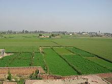 punjab india wikipedia