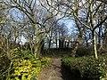 Air Street Cemetery - geograph.org.uk - 706813.jpg