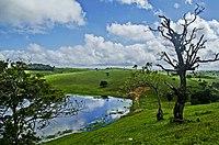 Alagoa Nova.jpg