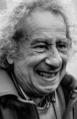Aldo Spoldi portrait.png