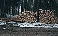 Ales Krivec 2014-11-26 (Unsplash Bb4C0IwSoW4).jpg