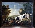 Alexandre-françois desportes, cane fermo davanti a una pernice rossa, 1690-1740 ca.jpg