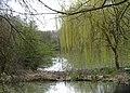 Allennes-les-Marais (Don) les marais (3).jpg