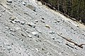 Alpine glacial till (Pleistocene; near Dana Fork, Yosemite National Park, California, USA) 5.jpg