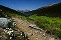 Alps of Switzerland DSC 2266-18 (14592191430).jpg