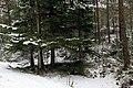 Alvøen forest - panoramio (1).jpg