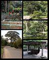 Ambientes y fauna de Zoologico de Caricuao Caracas - Venezuela 1.jpg