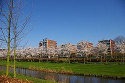 Apartment buildings in Amstelveen