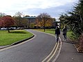 Ancaster Hall Drive - University of Nottingham - geograph.org.uk - 600740.jpg