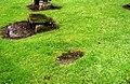 Ancient Grave Site near Auchterarder - geograph.org.uk - 428769.jpg