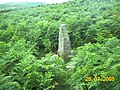 Ancient Standing Stone on the Begwns - geograph.org.uk - 30833.jpg