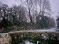 Another Snow Flurry - Sandy Grove - Llanteg - geograph.org.uk - 1653683.jpg