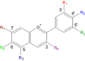 Anthocyane.png