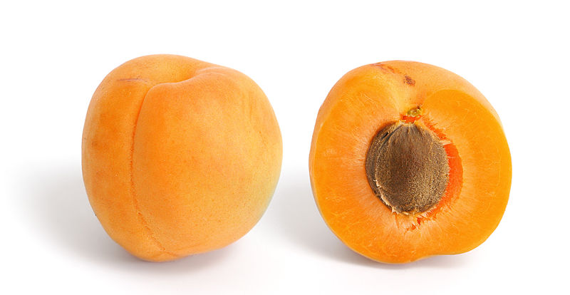 চিত্র:Apricot and cross section.jpg