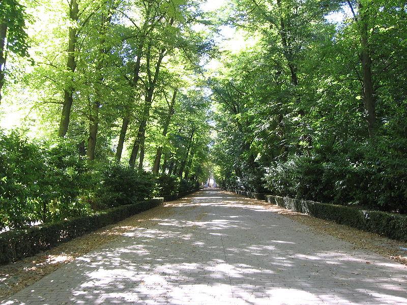http://upload.wikimedia.org/wikipedia/commons/thumb/2/2a/Aranjuez_Jardin_Principe_Calle_Arbolada.jpg/800px-Aranjuez_Jardin_Principe_Calle_Arbolada.jpg