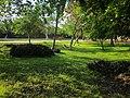 Area verde en el Boulevard Bahía. - panoramio.jpg