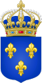 Arms of the Kingdom of France.svg
