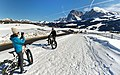 Auf der Seiser Alm in Süd Tirol. 06.jpg