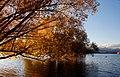 Autumn at Lake Tekapo NZ (19) (8671217976).jpg