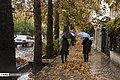 Autumn in Eram Garden 2019-12-09 10.jpg