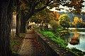 Autumn in Novi Grad.jpg