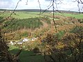 Autumnal view, Cwm Gwaun - geograph.org.uk - 277896.jpg