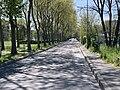 Avenue Illustration - Bobigny (FR93) - 2021-04-25 - 1.jpg