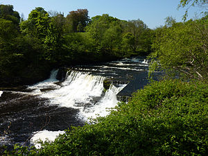 Aysgarth Falls - The Middle Falls from the North bank