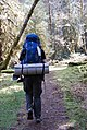 Backpacking gear backcountry hiking camping visitor hoh rainforest d archuleta march 05 2015 (22453621023).jpg