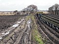 Bagging soil - geograph.org.uk - 1773685.jpg