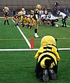 Baldwin Wallace Mascot watching a Goal Line Stand (7463633636).jpg