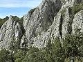 Banat, Nera Canyon - panoramio (77).jpg