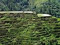 Banaue RiceTerraces.jpg