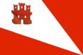 Bandera baraona.png