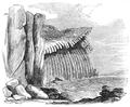 Basalt at Doon Point - H G Hine.png