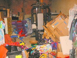 Professional organizing - Basement, before tidying