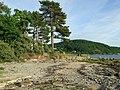 Beach at Ardgowan Point - geograph.org.uk - 1968777.jpg