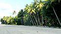 Beach in Port Douglas 3.jpg
