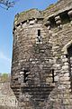 Beaumaris Castle 2015 012.jpg