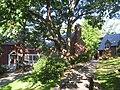 Belmont Hill School - IMG 1814.JPG
