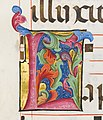 Benedictine Antiphonary MET DP158484.jpg