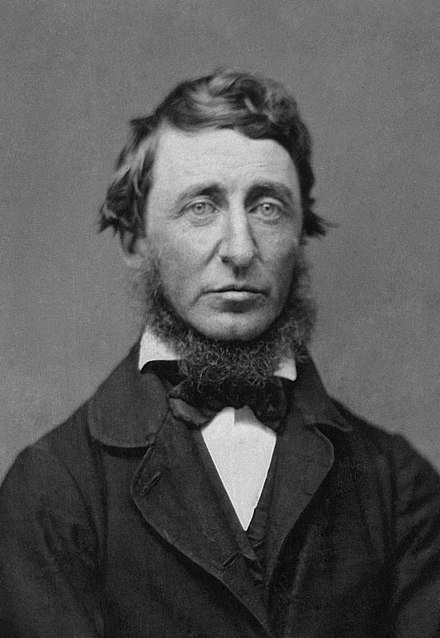 Henry David Thoreau's classic essay Civil Disobedience inspired Martin Luther King and many other activists. Benjamin D. Maxham - Henry David Thoreau - Restored - greyscale - straightened.jpg