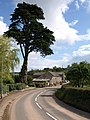Berry Pomeroy - geograph.org.uk - 915422.jpg