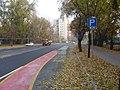Bicycle lane and bicycle rack at Bogdánfy út, Budapest.JPG