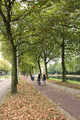 Bicycles on trail east of Heemstedestraat transit hub in Amsterdam Netherlands.png