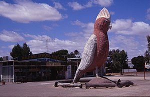 Kimba, South Australia - Big Galah