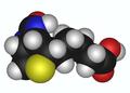 Biotin 3d model2.png