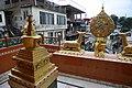 BirG094-Dharamsala.jpg