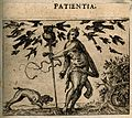 Birds attacking an owl resting upon a staff held by a naked Wellcome V0007642EBL.jpg